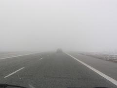foggy highway